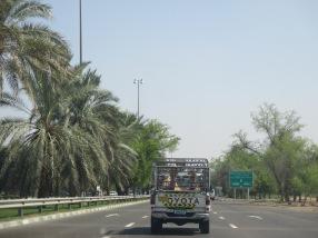 001_08.10.14_Al Ain (1)