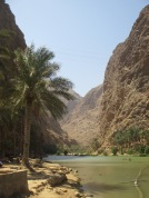 006_10.10.14_Wadi Shab (2)