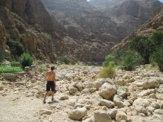 006_10.10.14_Wadi Shab (9)